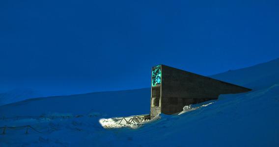 Svalbard Globale Frøhvelv. Foto i mørketiden i blåtimen med kunst lys-satt.