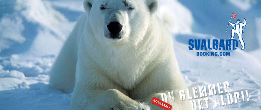 Svalbard Booking tilbyr aktiviteter og overnatting på Svalbard