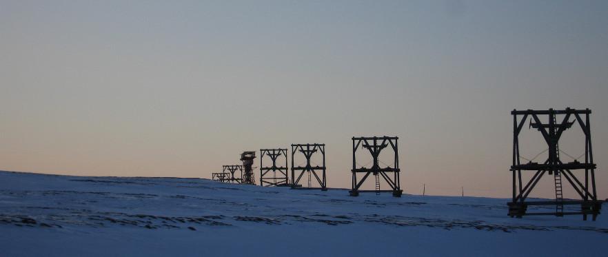 Svalbard Wildlife tilbyr dagsturer til lengre ekspedisjoner med snøscooter eller ski og om sommeren kajakkekspedisjoner, Villmarkscamper og fotturer.